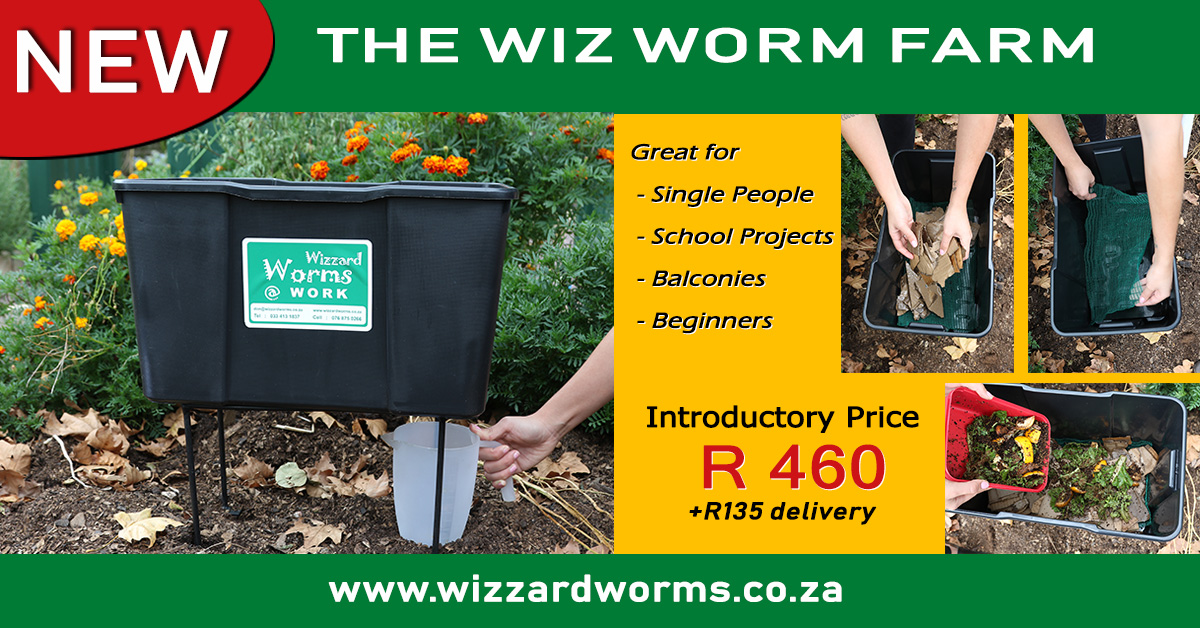 Wizard Worms NEW Wiz Worm Farm - a Wormery for anyone